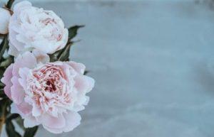 Home Economics- Lady Patrice Baker Blog